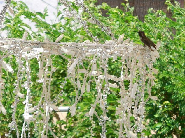 hummer-on-chandelier