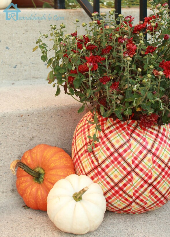 15-pumpkin-planters.jpg
