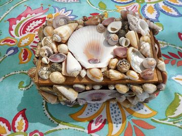 shell-box-memento-crafts-5
