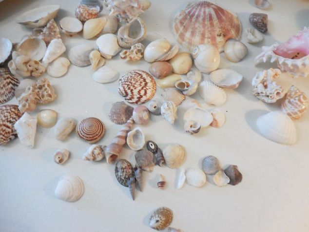 shell-box-memento-crafts.jpg