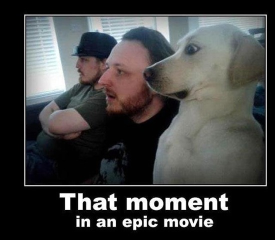 11-epic-moment
