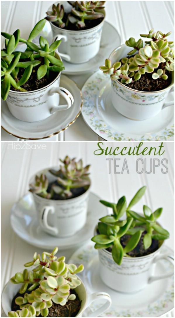 30-succulent-tea-cups-diyncrafts-com.jpg