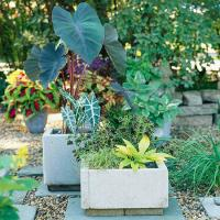 Simple To Create Concrete Planters