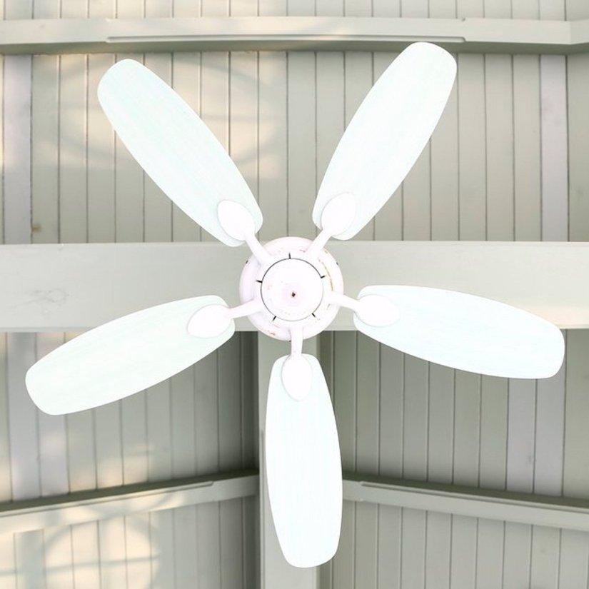 shutterstock_176251328-fan.jpg